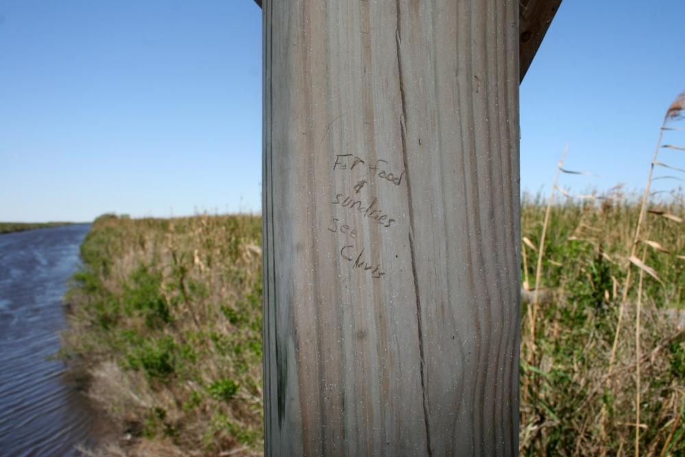Louisiana research trip: the photos (2/6)