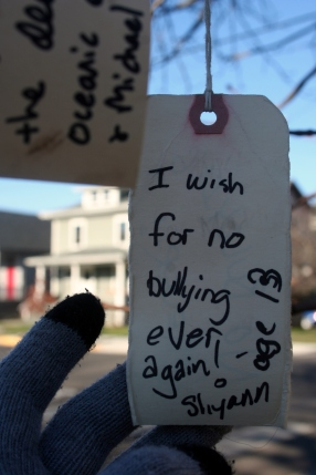 I wish for no bullying ever again! -- Shyann age 13